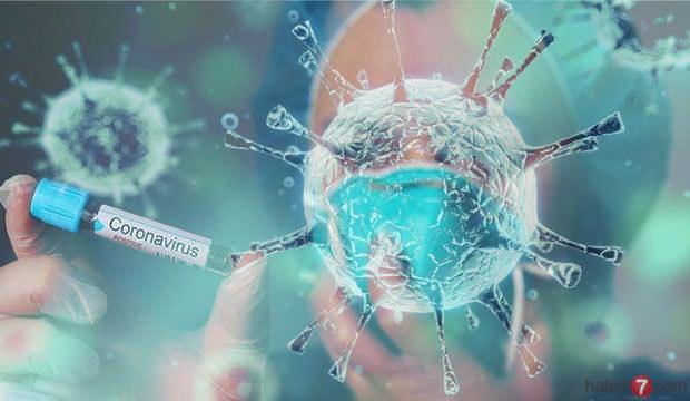 Corona Virüs Hangi Durumlara Direnç Gösterir